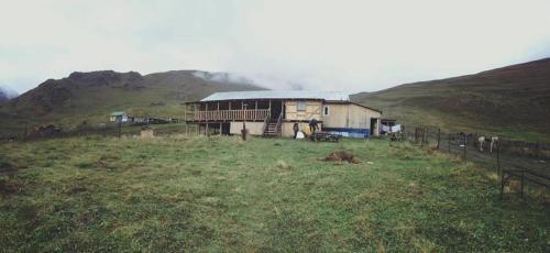 Гостевой дом Гиреви, Дартло