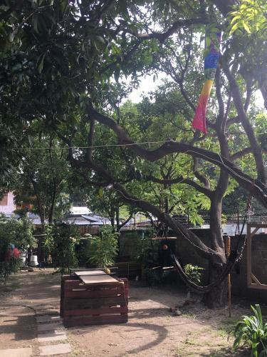 Hostel daTerra, Dili