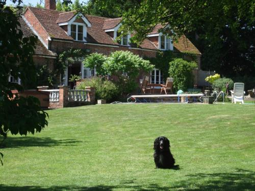 Packridge Apartments and Bed & Breakfast hotel in Romsey