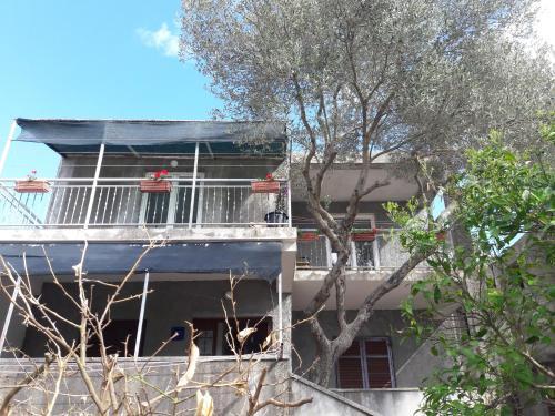 Apartments Neda
