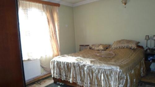 Guesthouse Surami