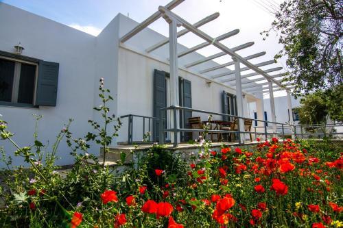 Pavlos House