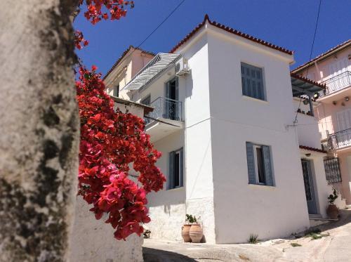Poros Island City House