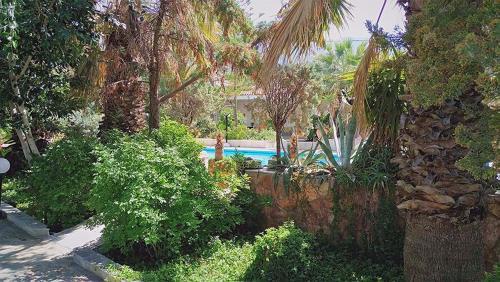 Alepokhori Beach stunning Villa with Olympic pool
