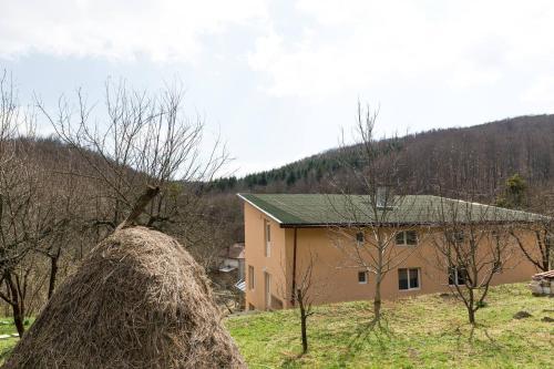 Casa Petru Stolna