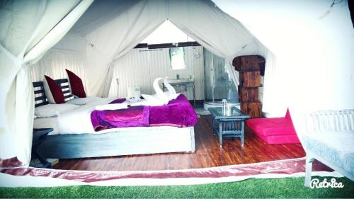 Green Glamping Resorts Sonamarg