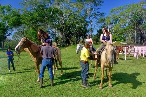 Banana Bank Lodge & Jungle Horseback Adventures