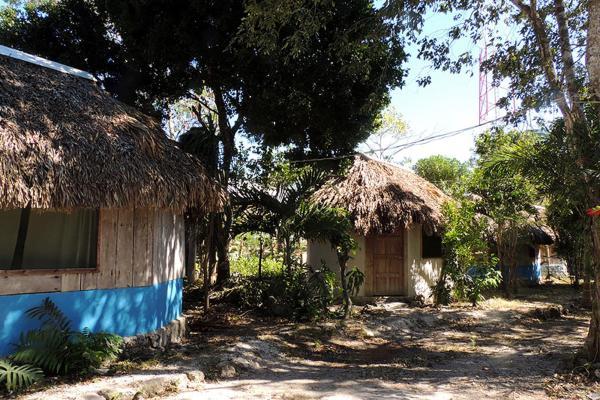 Cabanas la Selva