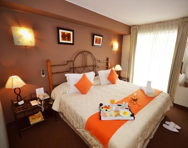 Suites Antique Apart Hotel_1