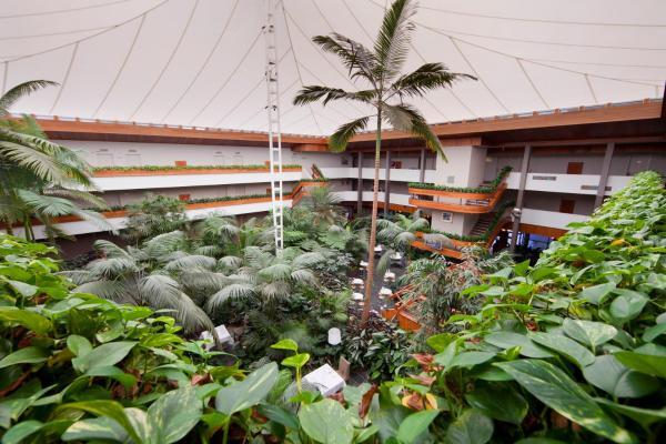 Pavilion On Northbourne