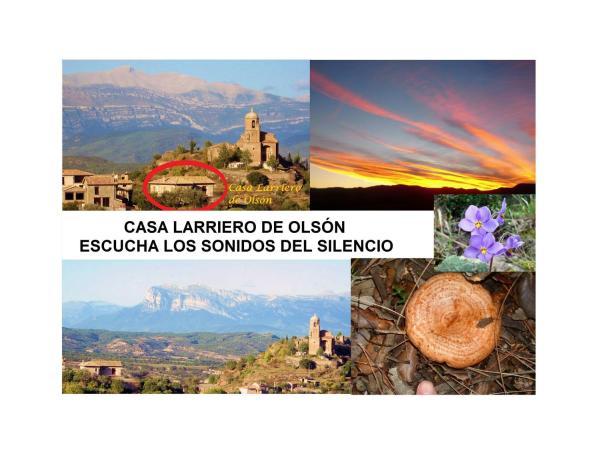 Casa Larriero de Olsón