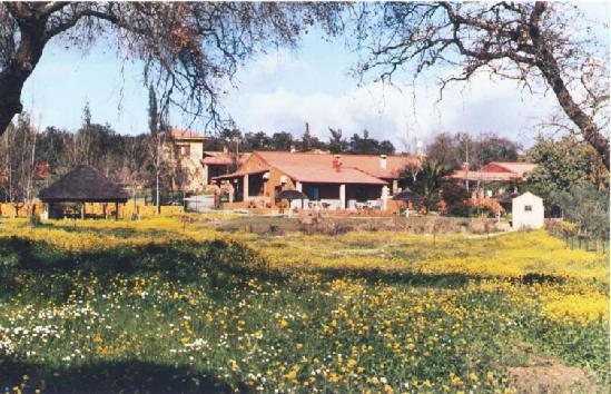 Cortijo Zalamea