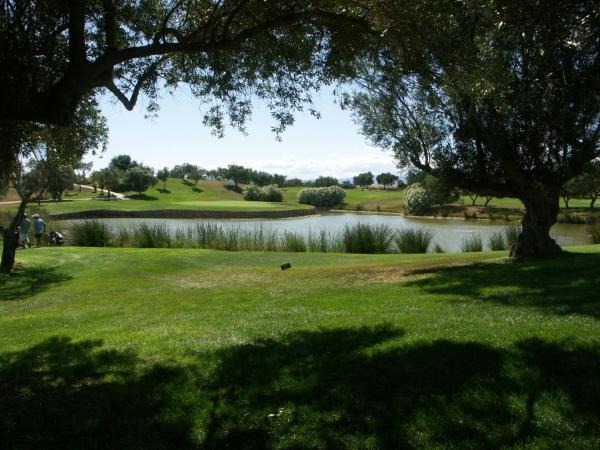Montero V by Golfinc