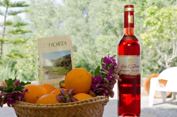 Agroturisme s' Horta