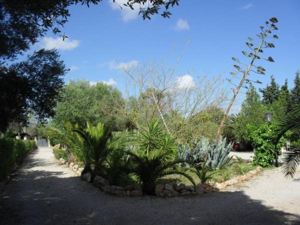Casita Paraguaya