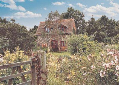 Eden Cottage in Coltishall, Norfolk, England