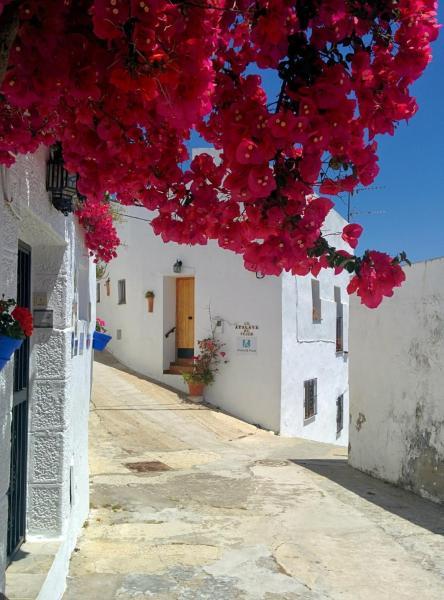 Holiday home La Atalaya de Vejer