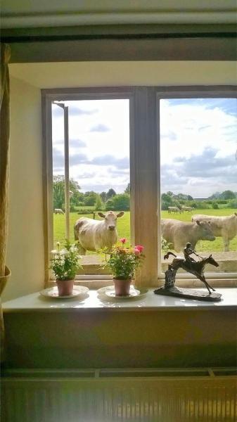 Battens Farm Cottages B&B in Yatton Keynell, Wiltshire, England