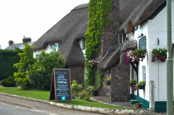 Greyhound Country Inn in Honiton, Devon, England