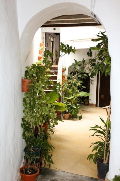 Apartmentos Molina