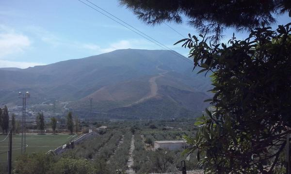 Huerta La Niña Arenas