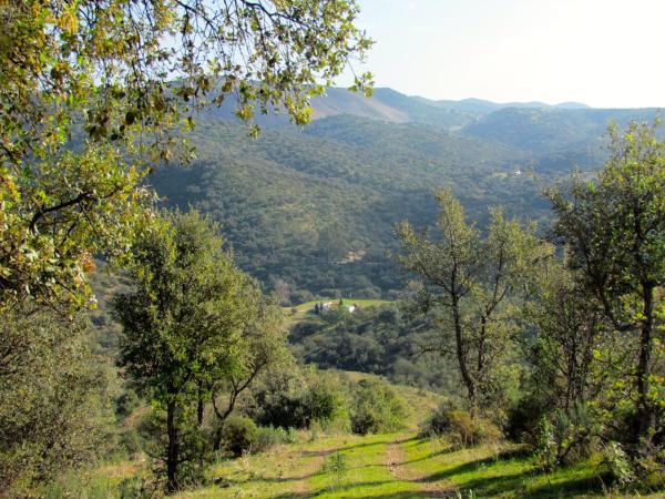 Finca Valle Corchoso