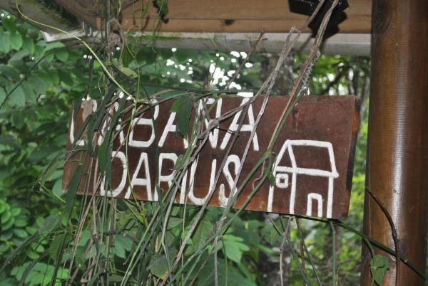 Cabaña Darius_1