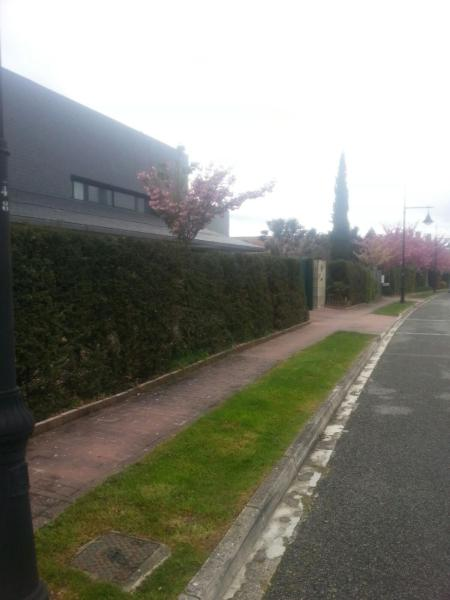 Jardin de los Olivos