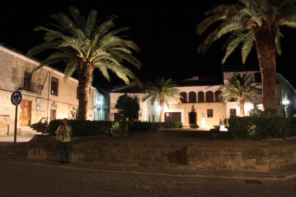 Palacio las Manillas