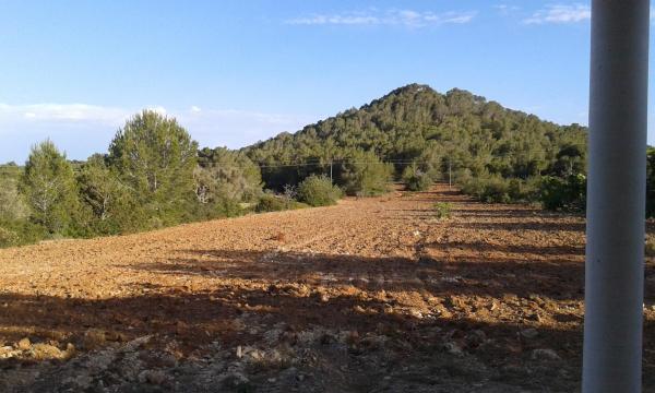 Casa Es Puig Redó