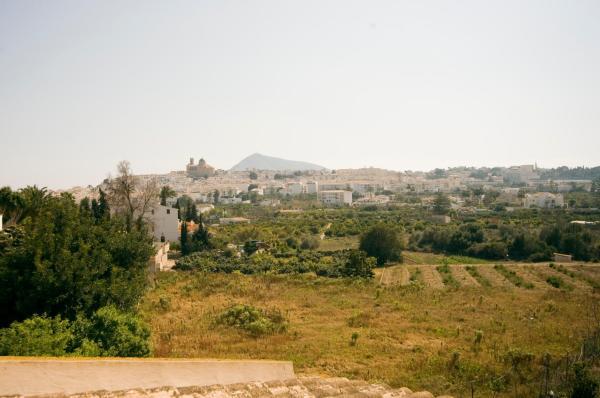 Alteana San Roque