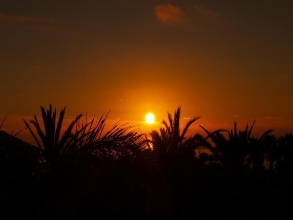 Chayofa Sunrises