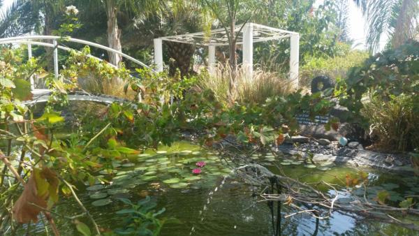 Kmo Yam In The Love Garden_1