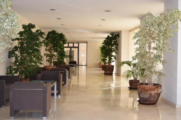 Estudios Edificio Lares