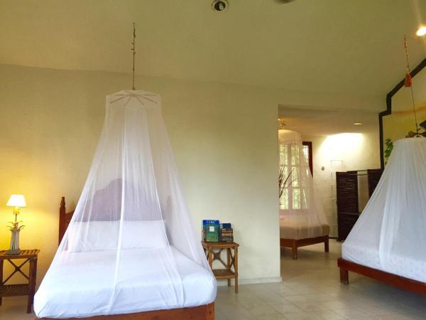 Casa de Piedra Privet Room / Bath