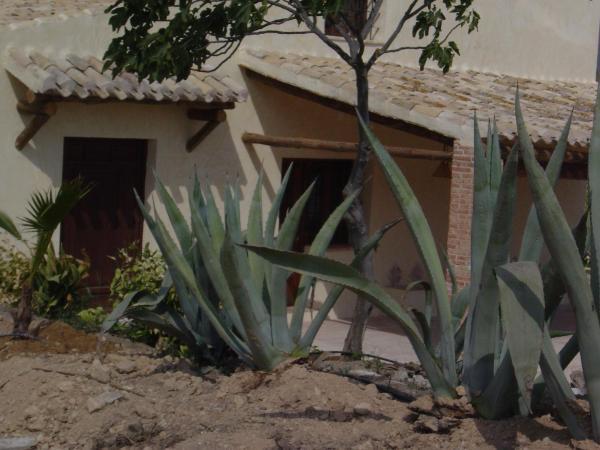 Casas de Ainas