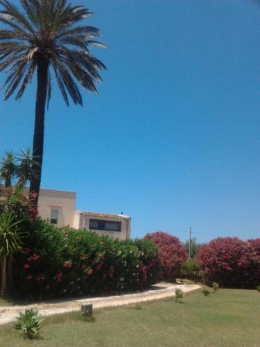 منزل للعطل (Holiday Home)
