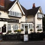 Matterley Bowl Hotels - The Cricketers Inn