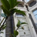 Hotels near Ashton Gate Stadium - Riverview Guest House