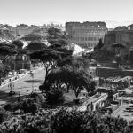 La Cupola del Vaticano - thumbnail 20
