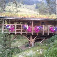 Biobergbauernhof Brandenau