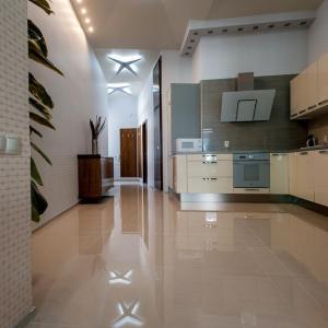 Luxury 2 BR apartment in center