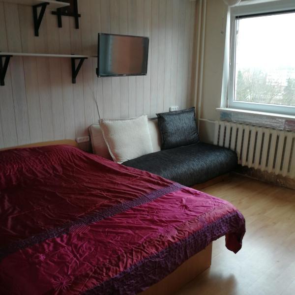 Flat, 1 room, study