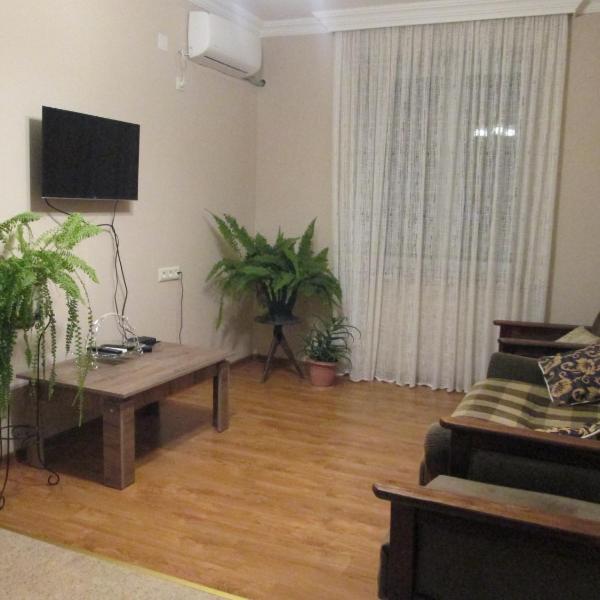 Apartment Mandarina