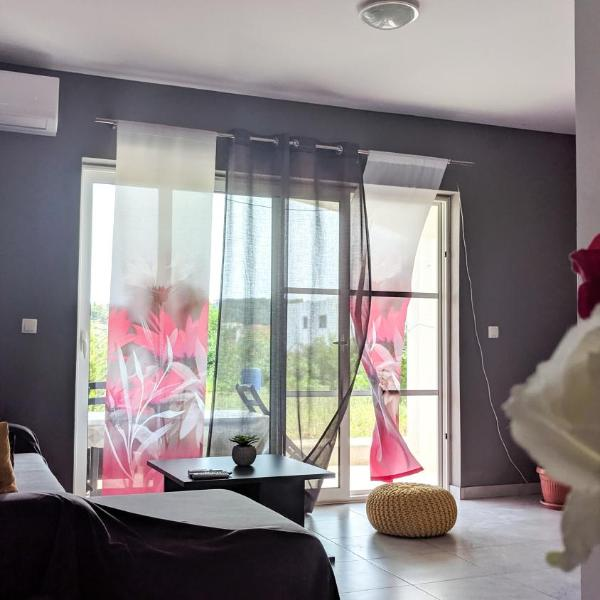 Apartment Anton