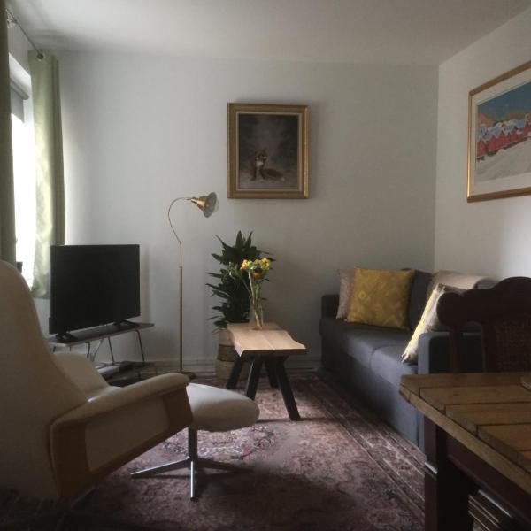 Lovely Apartment, Vuorimiehenkatu 31