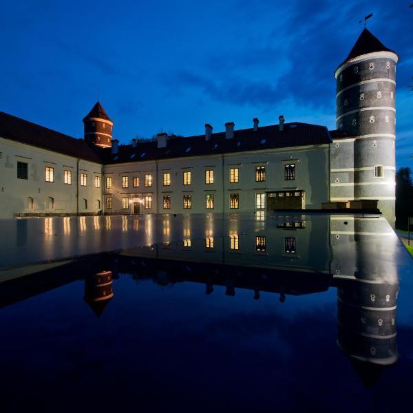 Best Baltic Panemunė castle