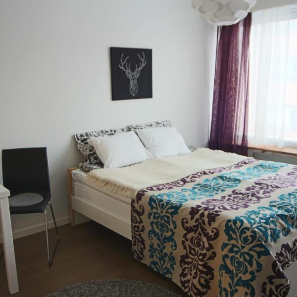 Jaakonkatu City Apartment